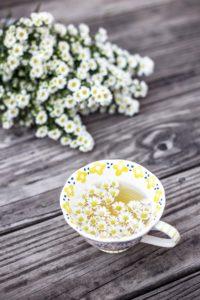 Daisy Facts: Daisy herbal tea.
